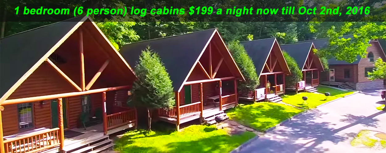 log-cabin-fall-special