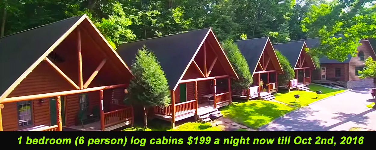 at cottage wisconsin the specials to rental dells minutes cabin lily summer off cabins river pad footsteps