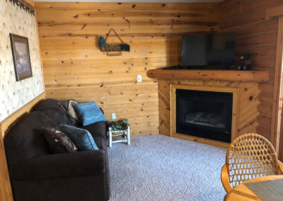 cabins for rent near wisconsin dells, wisconsin dells condos for rent