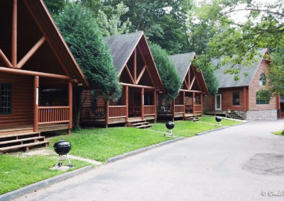 wi dells cabin rentals,vacation cabin rentals, hotels in the dells, wisconsin dells waterpark deals, condos in wisconsin dells