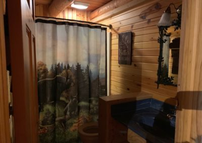 best hotels in wisconsin dells, wisconsin dells specials, things to do in wi dells